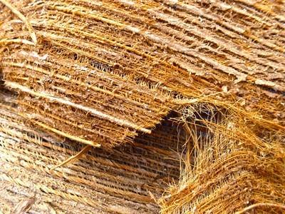 Fibres naturelles de coco biologique